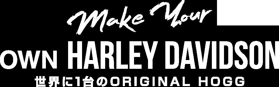 make your own HARWY DAVIDSON